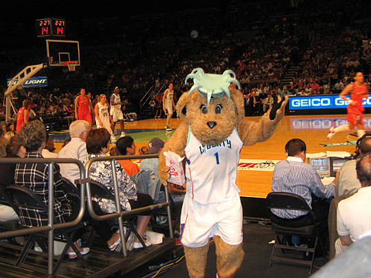 Maddie at the New York Liberty
