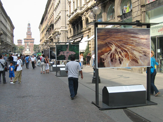 Yann Arthus-Bertrand photo exhibit in Milan